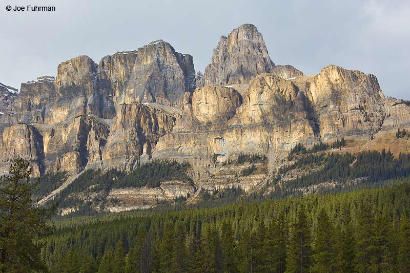 Castle Mtn.-Banff National Park, AB, Canada Oct. 2013