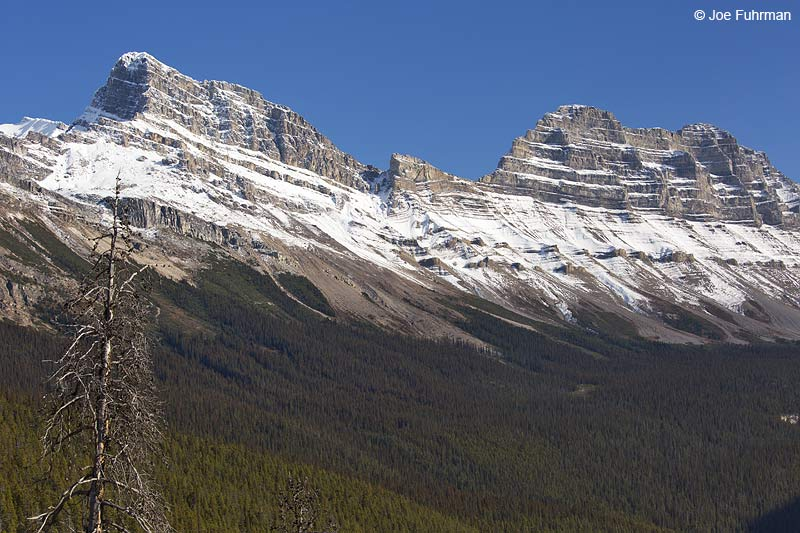 Jasper National Park, AB, Canada Oct. 2013