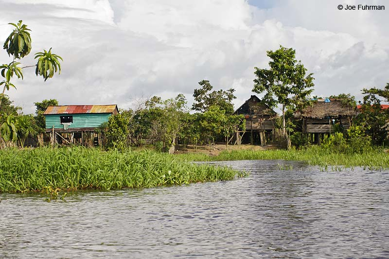 Village along Amazon River  near Iquitos,Peru December 2006