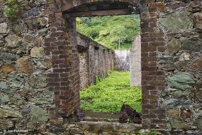 Sugar Cane Mill-ruins; Speyside, Tobago Trinidad And Tobago Dec. 2012