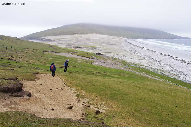 Saunders Island, Falkland Islands Nov. 2010