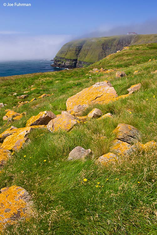 Cape St. Mary's, Newfoundland, Canada August 2011