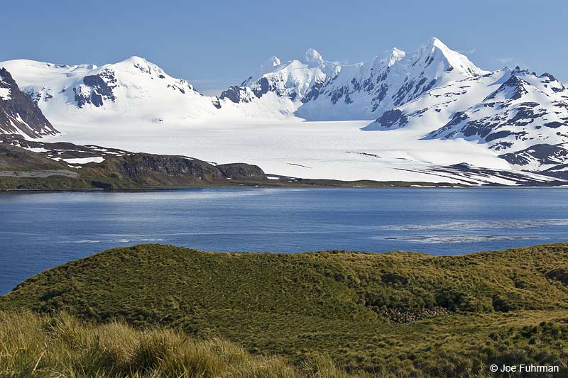 View of South Georgia Island from Prion Island Nov. 2010