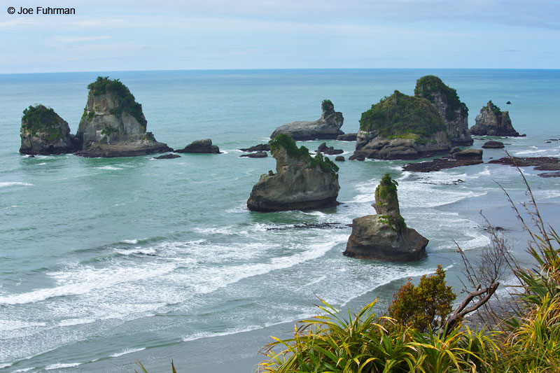 Paparoa National Park, New Zealand   Dec. 2014