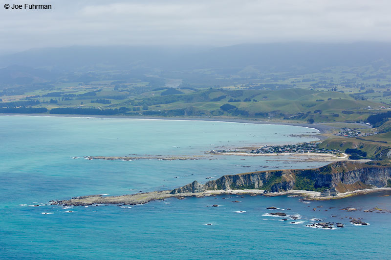 Kaikoura, New Zealand   Dec. 2014